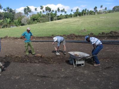 Kuba 2011 erleben