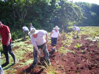 Einfache landwirtschaftliche Tätigkeiten erwarten die Workcamper.