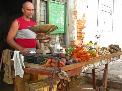 Frisches Obst und Gemüse auf einem Bauernmarkt