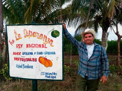 Der private Landwirt Hernández exportiert jetzt seine Limetten nach Spanien, Foto: cubadebate