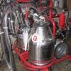 Neue mobile Melkanlagen von Cuba Sí verbesserten das Produktionsergebnis auf den Landwirtschaftshöfen.