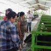 Kälberaufzucht im Cuba Sí-Projekt in Sancti Spíritus