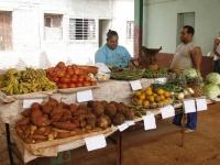 Neue Möglichkeiten in der kubanischen Wirtschaft